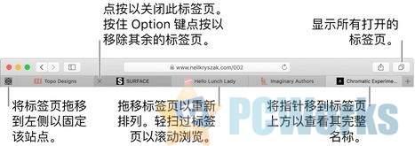 Safari教程:以新标签页形式打开网页